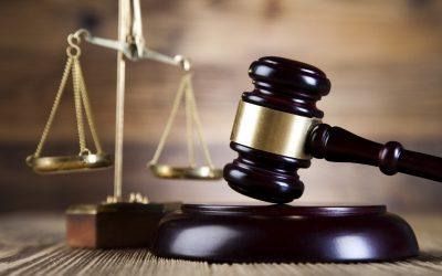 Tribunal Supremo: Acceso al transporte de mercancías